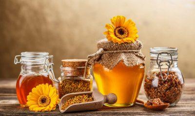 Мёд — уникальный дар природы